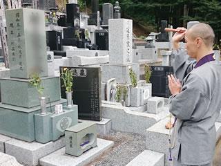 樹木葬をするなら墓じまいの手続きが必要